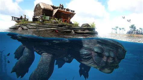 You can tame a giant sea turtle and build a house on its ...
