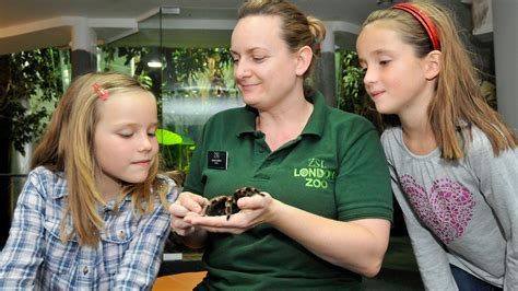 Youth Groups | Zoological Society of London  ZSL