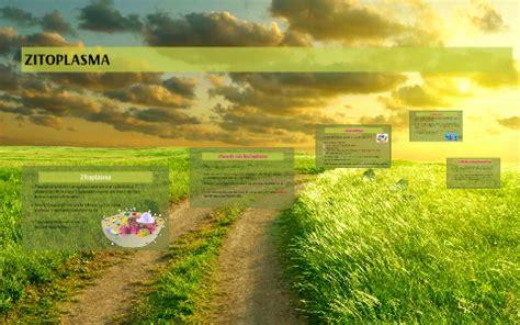 ZITOPLASMA by Naroa Barriga Rodriguez on Prezi