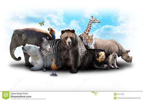 Zoo Animal Friends stock image. Image of national, danger ...