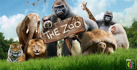 Zoo animals are the stars of new TV show   Whats On South West