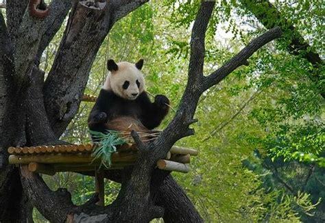 Zoo Aquarium de Madrid   Aktuelle 2019   Lohnt es sich ...