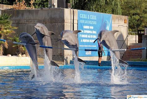 Zoo Aquarium en Madrid »【2021】