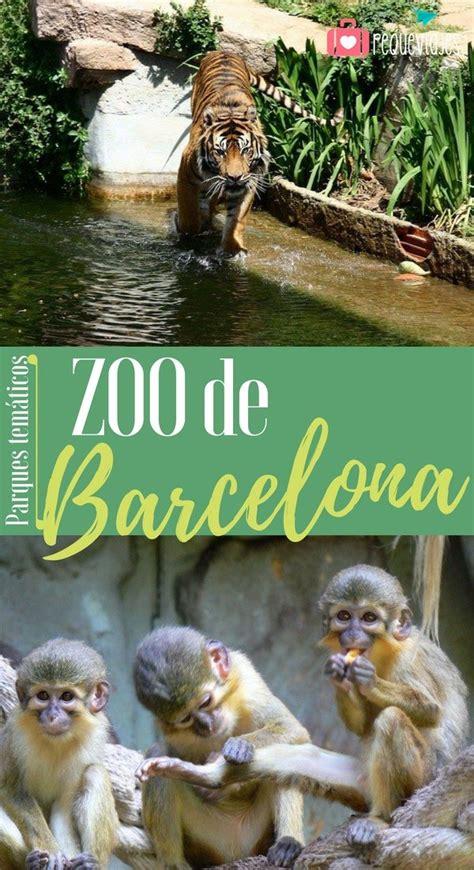 Zoo Barcelona. Horarios, entradas e info sobre el Zoo de ...
