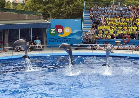 Zoo de Barcelona | Attractions in Sant Pere, Santa ...