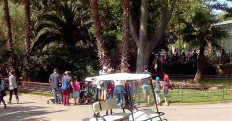 Zoo de Barcelona|Trendy U|blog de tendencias de moda y ...