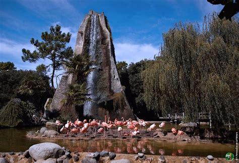 Zoo de La Palmyre  La Palmyre Les Mathes    2019 All You ...