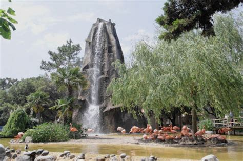 Zoo de La Palmyre : la vie sauvage en bord de littoral