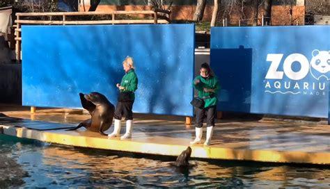 Zoo de Madrid en familia   Entradas, precio, horario y ...
