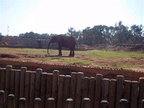 Zoo de Rabat   Rabat