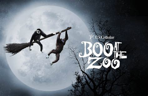 Zoo Knoxville   BOO At The Zoo | 96.9 WXBQ