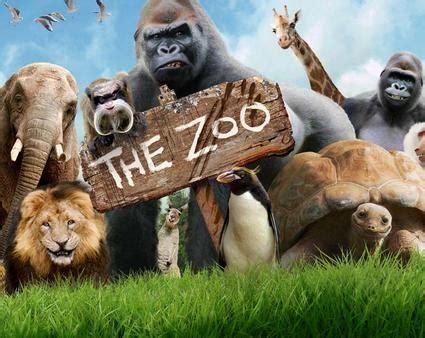 Zoo on national TV • Paignton Zoo News