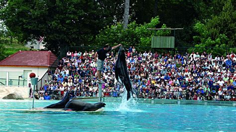 Zoo Parc de Beauval, Val de Loire, une balade en France