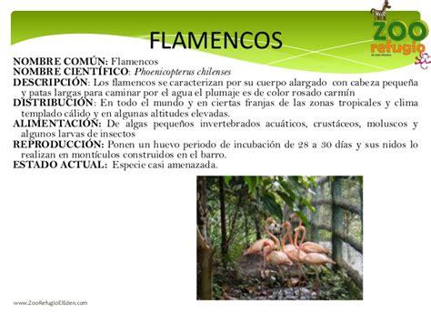 Zoo Refugio el Eden. Rotulos de Informacion de las ...