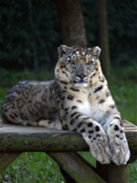 Zoo Santo Inacio  Vila Nova de Gaia    2020 All You Need ...