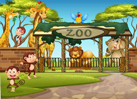 Zoo Vectors, Photos and PSD files   Free Download