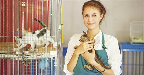 Zookeeper Courses – Frequently Asked Questions   Open Colleges