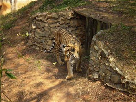 Zoológico de BH   Horário de funcionamento e preços 2013