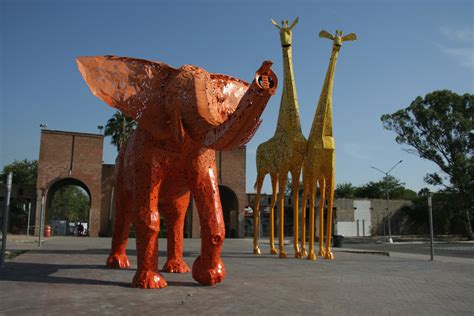 Zoológico La Pastora | nl.gob.mx