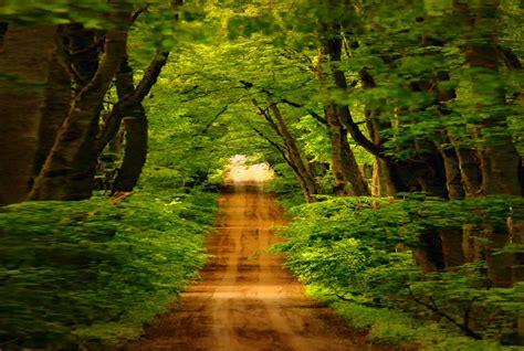 ZOOM FRASES: fondos y wallpapers de paisajes naturales ...