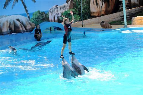 Zoomarine Aquatic Theme Park · Praia da Luz Holidays