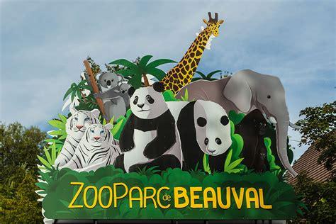 ZooParc de Beauval   Wikipedia