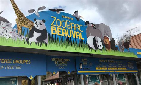 ZooParc of Beauval   The most beautiful zoo in France ...