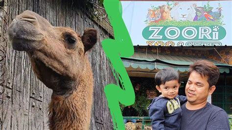 ZOORI: RESIDENCE INN MINI ZOO AT TAGAYTAY CITY   YouTube